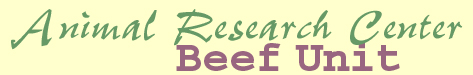 Animal Research Center - Beef Unit