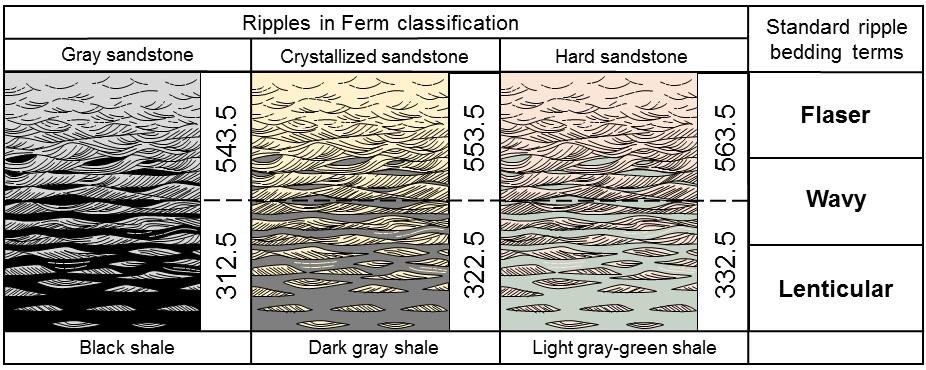 Geologists generally study anatomy