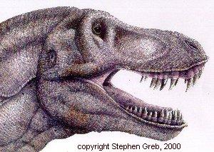 Draw T Rex