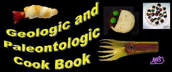 Geologic And Paleontologic Cook Book Educational Resources For K 16