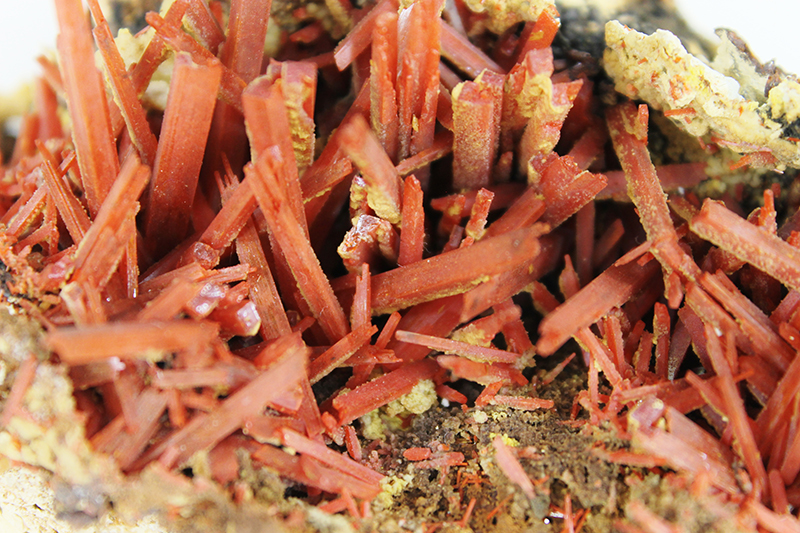 Specimen of the Month from the KGS Collection: Crocoite