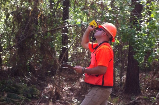 Careers in a forest(outdoors)?