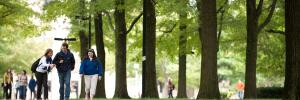 Students walking path between trees