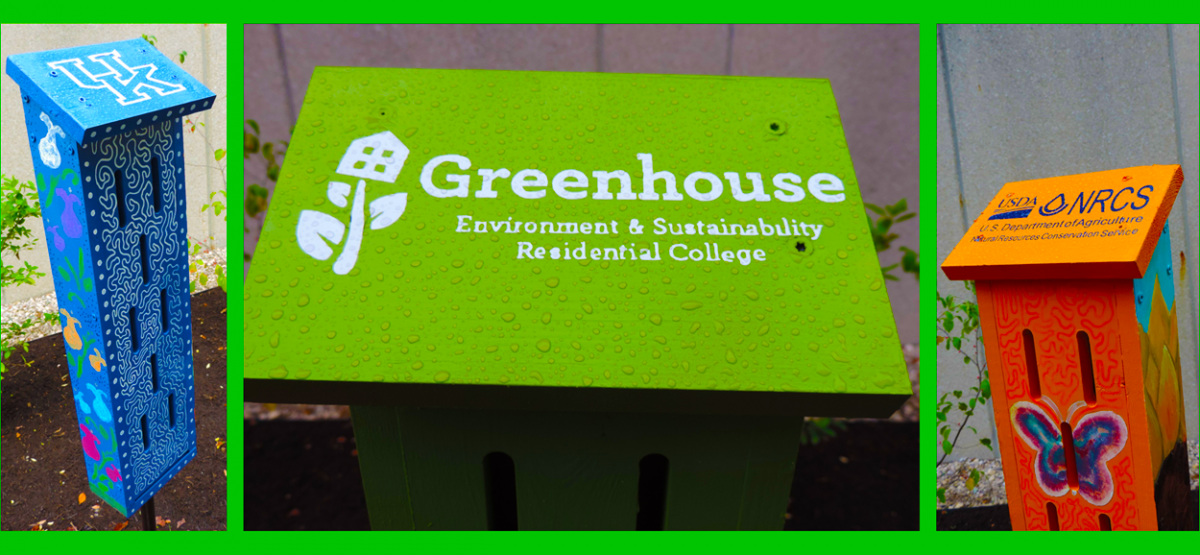 Greenhouse is UK's Environment and Sustainability Residential College and is housed in Woodland Glen II (see http://greenhouse.as.uky.edu/). Students in Greenhouse are required to enroll in two connected courses, one course per fall and spring semesters. During the fall of 2015 semester, students enrolled in UK 100 Pathways and Barriers to Environmental Sustainability participated in a hands-on project to create six butterfly gardens on UK's campus. The gardens were designed, under the supervision of Dr. Carmen Agouridis, by technical staff member Tyler Sanderson and undergraduate students Coleman Stivers and Adam Garner all from the Biosystems and Agricultural Engineering Department.
