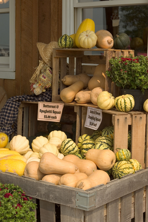 On-farm stores are among numerous agritourism opportunities