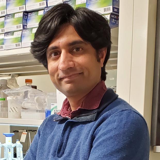 Chintan Kikani, PhD's picture