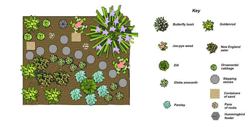 Butterfly garden design department of horticulture for Butterfly garden plans designs