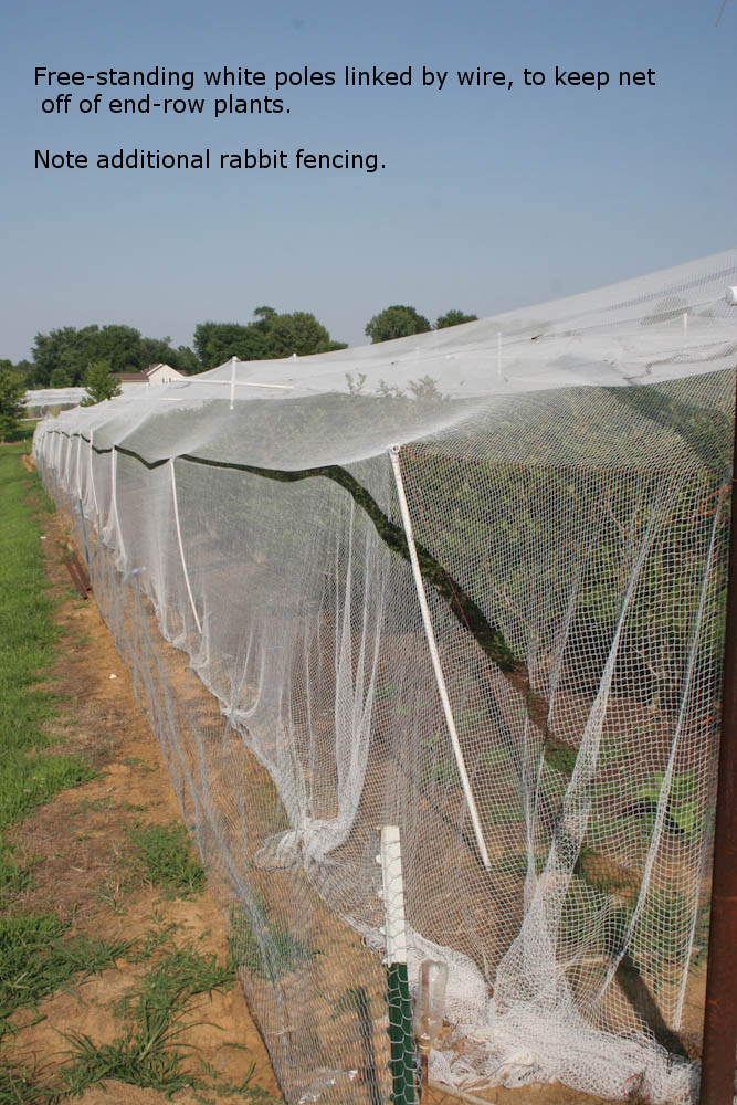Single Row Netting For Homeowners