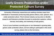 Leafy greens survey poster
