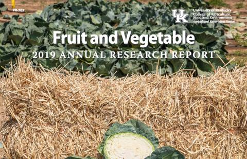 Cover of 2019 Fruit and Vegetable Annual Research Report