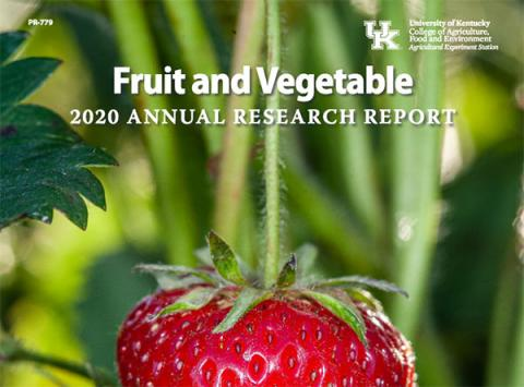 2020 UK Fruit and Vegetable Research Report cover