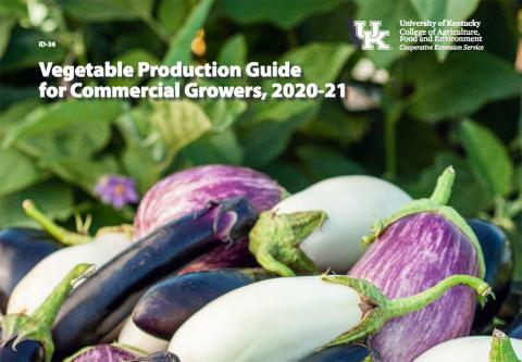 Cover page of ID-36, Vegetable Production Guide for Commercial Growers