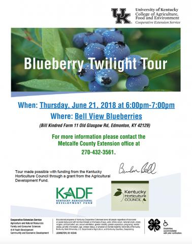 Blueberry Twilight Tour flyer