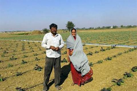 A farm family in their drip-irrigated field in India. Photo by Brent Rowell.