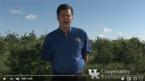 UK Horticulture Extension Associate Chris Smigell discusses vole management in blueberry production