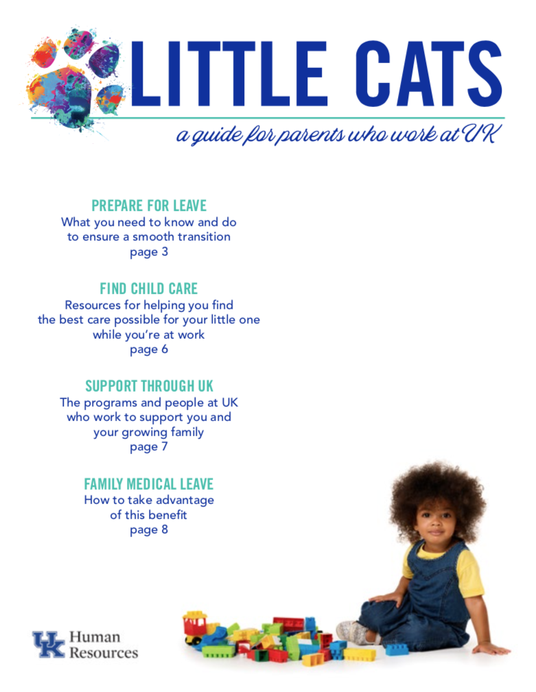 Cover of Little Cats Guide PDF