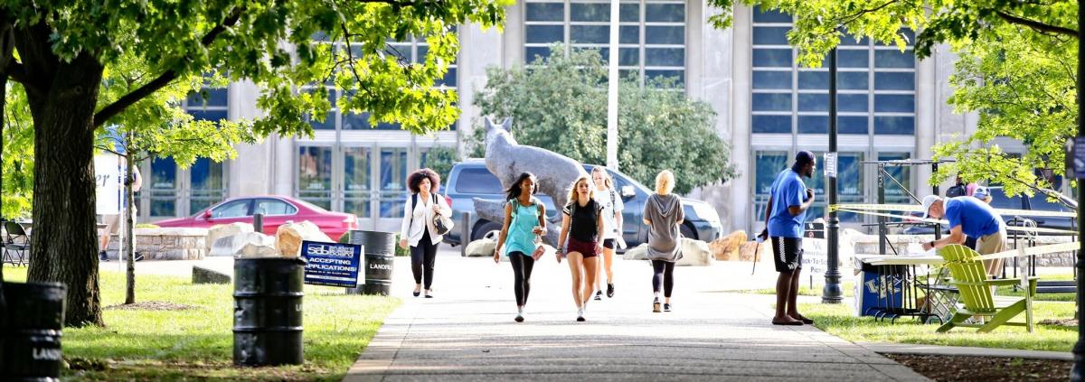 Photo of females walking toward the camera on a summer day with the Wildcat statue and Memorial Colesium in the background
